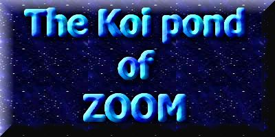 The koi pond of Zoom  1