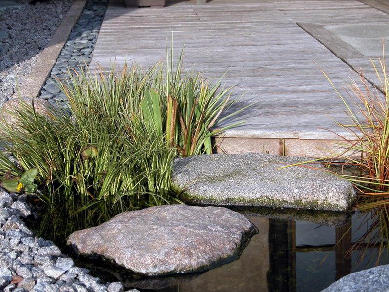 Bassin a ko et jardin japonais richert 1 suite 1 for Bassin jardin japonais