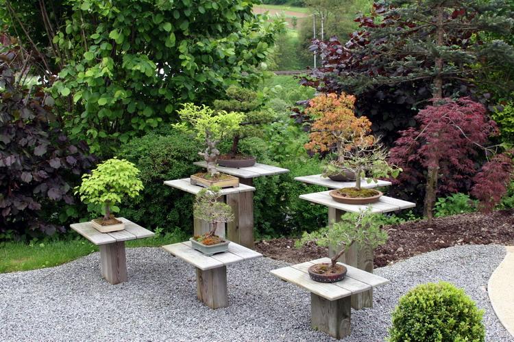 Aquamarathon alsacien 2006 6 for Plan de petit jardin japonais