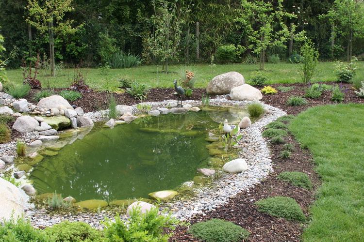 Petit bassin en alsace en 2007 for Petit bassin