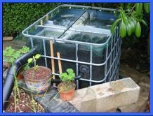 filtre bassin cuve 1000l. Black Bedroom Furniture Sets. Home Design Ideas