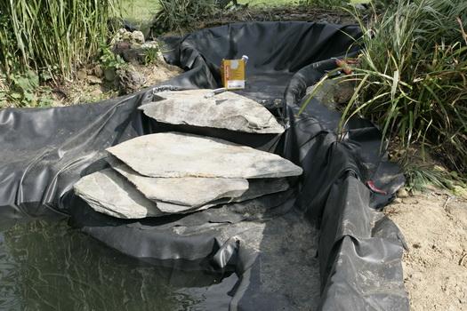 r habiltation d 39 un bassin du branois construction de la. Black Bedroom Furniture Sets. Home Design Ideas