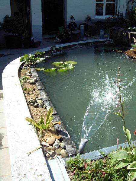 Le jardin aquatique balade 3 for Construction bassin aquatique