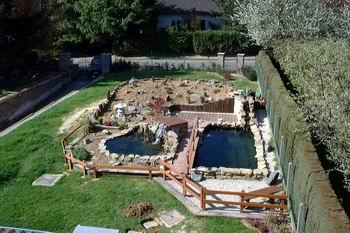 Michael l 39 introduction - Construction etang de jardin ...