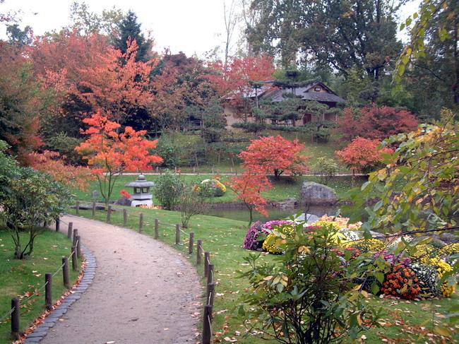 Le Jardin Japonais De Hasselt References