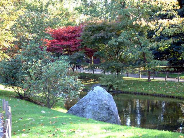 Le Jardin Japonais De Hasselt Automne 1