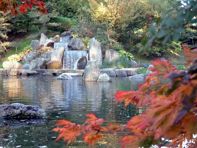 Le Jardin Japonais De Hasselt Automne 3