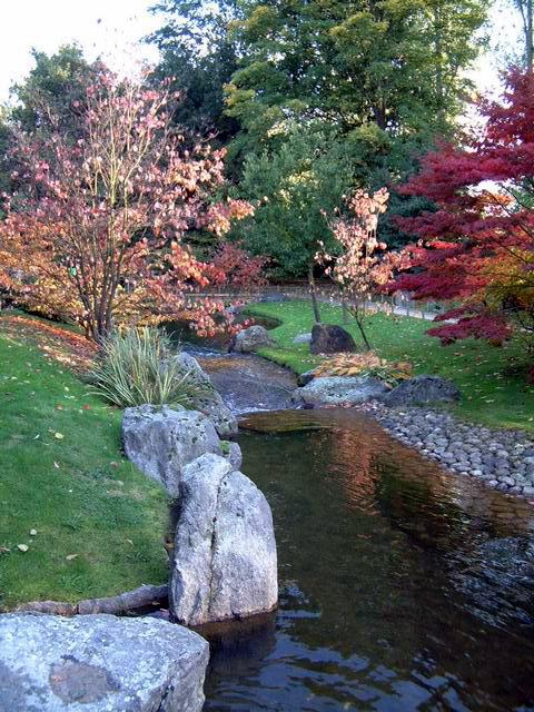 Le jardin japonais de hasselt automne 4 for Jardin japonais hasselt 2016
