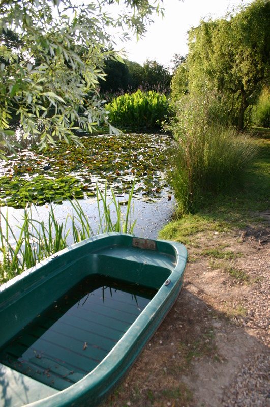 Jardin aquatique 10 for Jardin aquatique