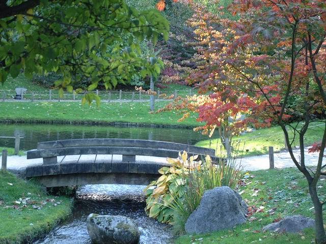 Jardin japonais d 39 hasselt couleurs d 39 automne 2 for Jardin japonais hasselt 2016