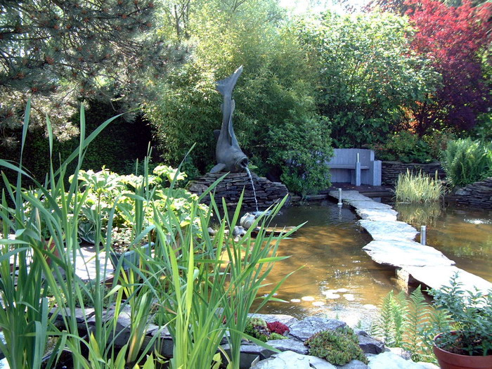 le jardin aquatique de r ve du condroz printemps 2003 2. Black Bedroom Furniture Sets. Home Design Ideas