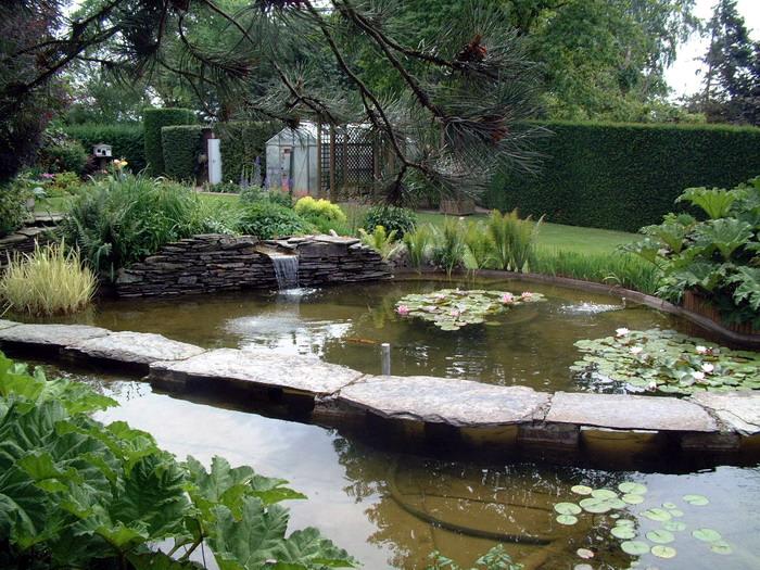 le jardin aquatique de r ve du condroz printemps 2003 7. Black Bedroom Furniture Sets. Home Design Ideas