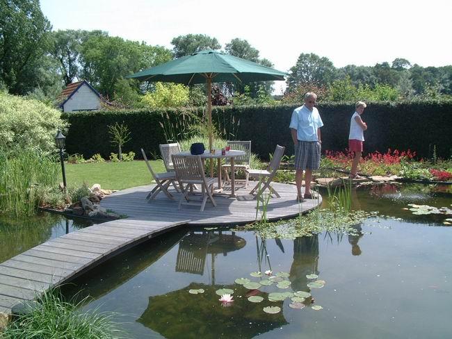Le jardin aquatique de scoubidou 2 for Jardin aquatique