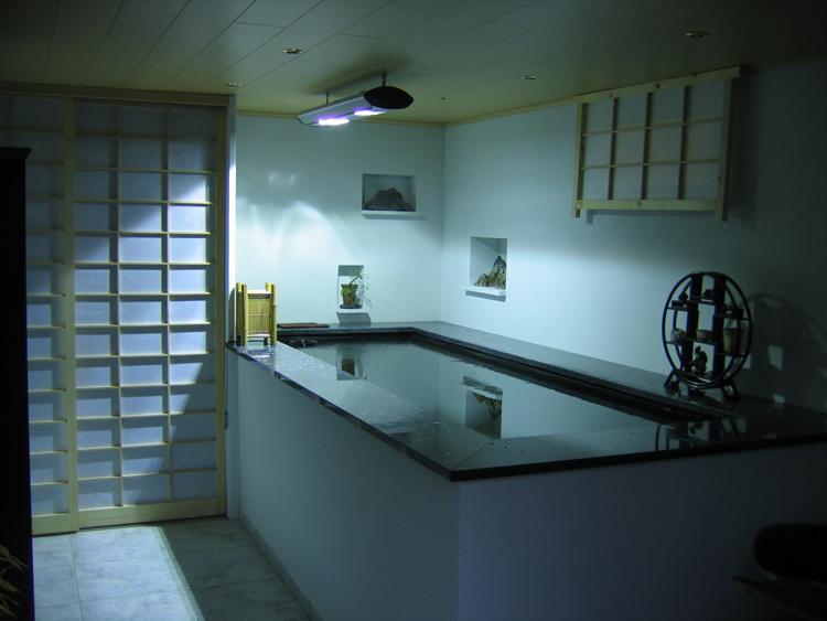 Construction d\'un bassin intérieur - L\'éclairage et la décoration