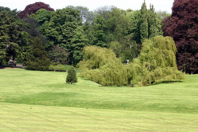 Les serres royal de belgique le parc for Serres de jardin belgique