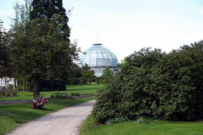 Les serres royal de belgique le bassin for Serre de jardin belgique