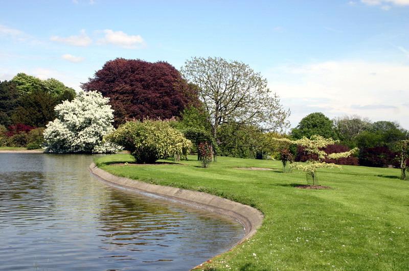 Les serres royal de belgique le bassin for Serres de jardin belgique