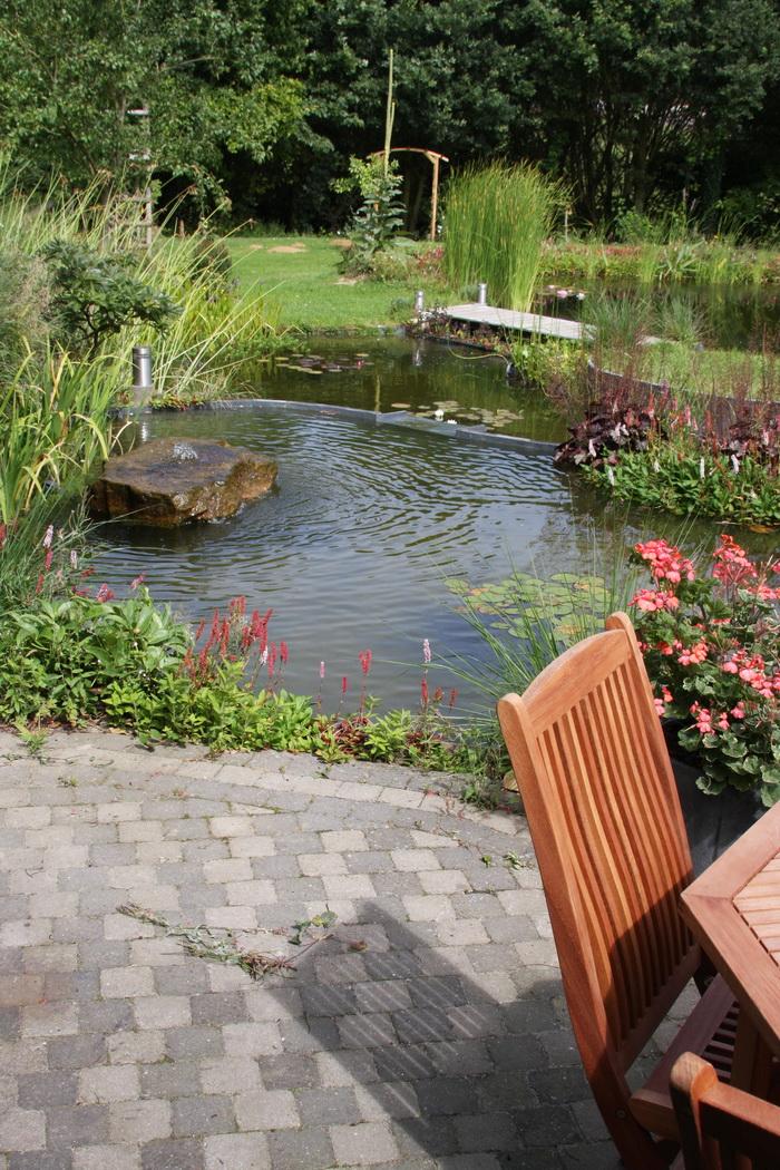 Bassin de jardin naturel lasne d tails 1 for Bassin naturel jardin