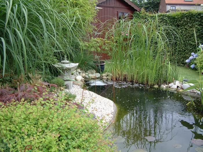 Le bassin de jardin de julien - Grand bassin de jardin ...