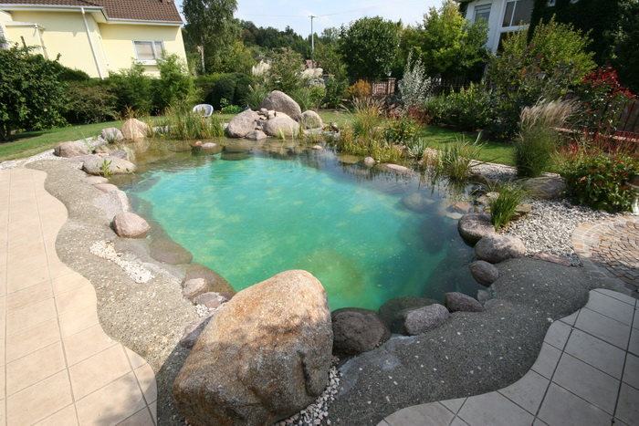 Question piscine le portail de toutes les formes de piscine for Bassin naturel piscine