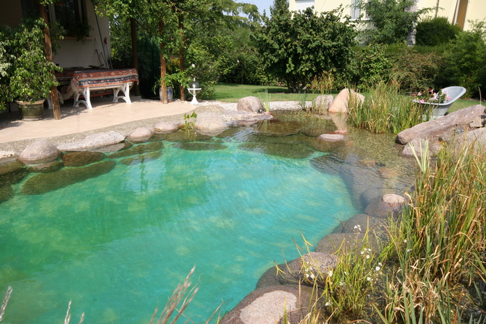 Transformation d 39 une piscine classique en bassin baignade 1 for Transformation piscine