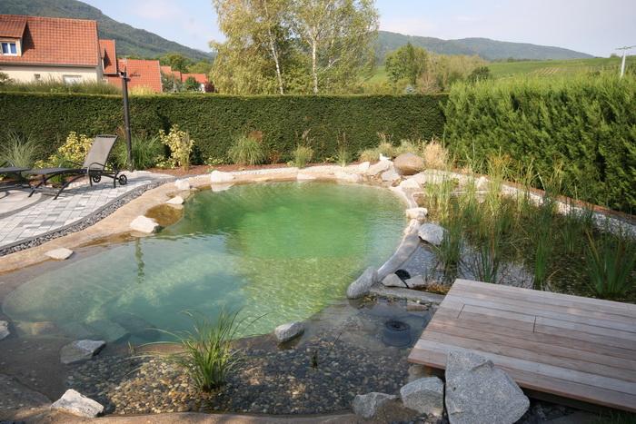 Un bassin baignade dans les vosges page photo 1 for Piscine 42 php