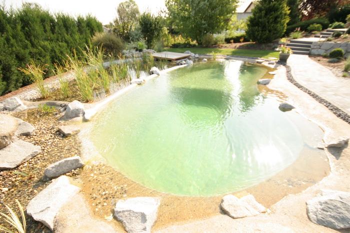Un bassin baignade dans les vosges for Bassin de baignade