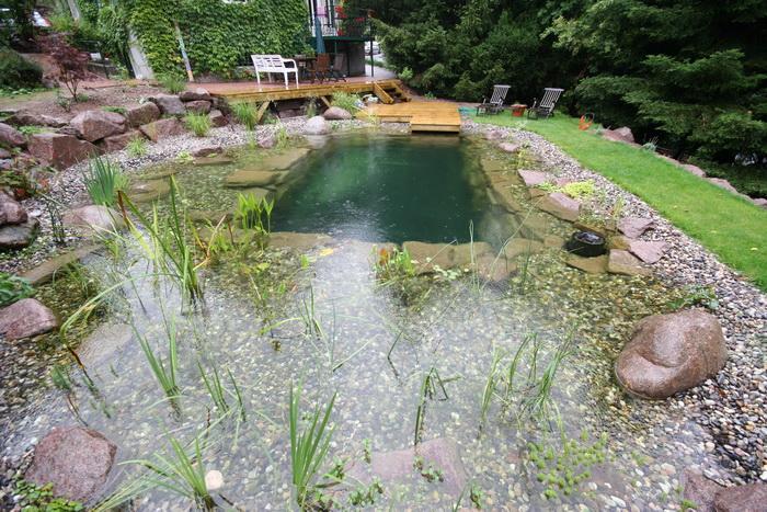 Un bassin baignade dans les voges set de photos 1 - Piscine bassin naturel tours ...