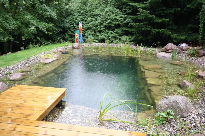 Un bassin baignade dans les voges set de photos 1 for Bassin de baignade