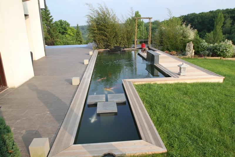 the koi pond of Nicolas   IMG_8946