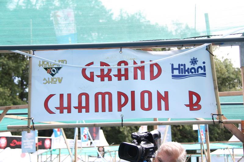 Grand champion B