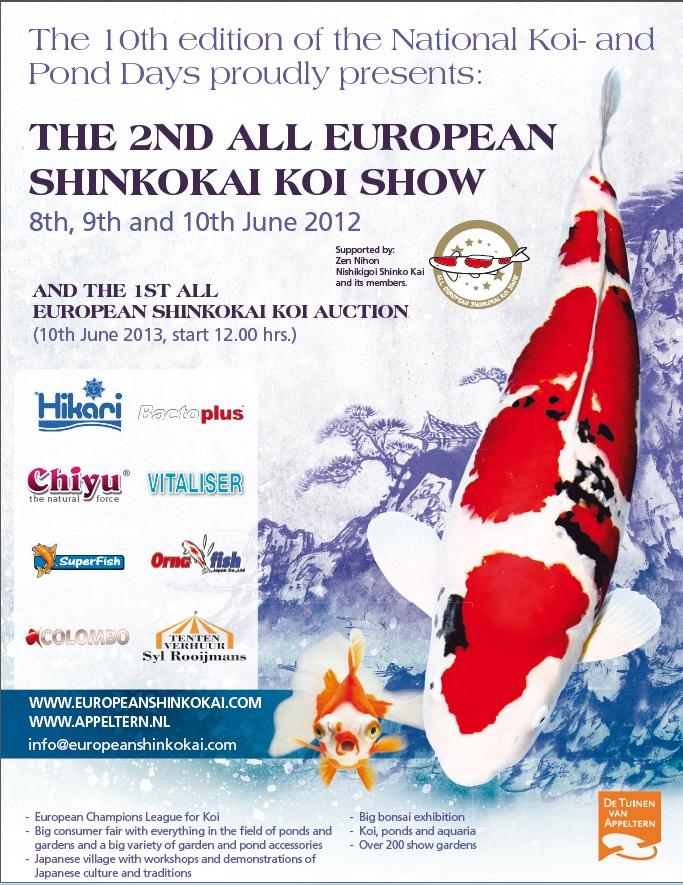 All European Shinkokai koi sow