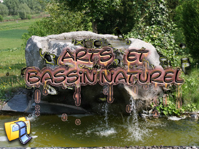 art et bassin naturel 2008
